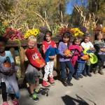 We have our pumpkins!